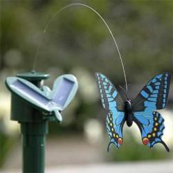 Fluture solar