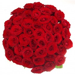 Buchet din 41 Trandafiri olanda
