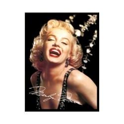 "Magnet ""Marilyn Monroe shining"""