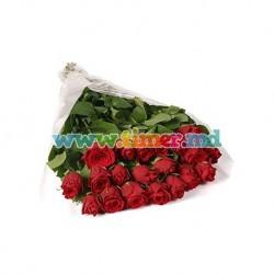 Buchet din 25 Trandafiri olanda (80-100cm)