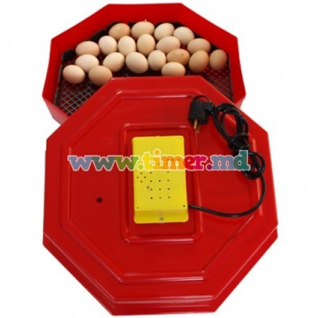 Incubator electric termostatat Cleo 5